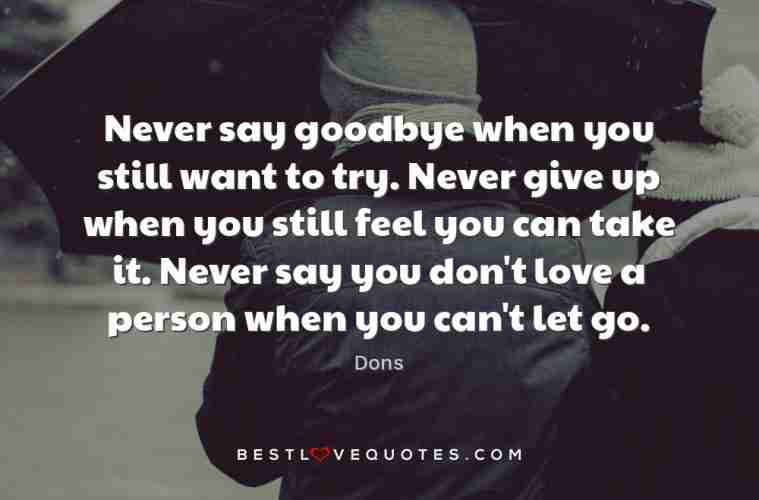 Never want to let go quotes